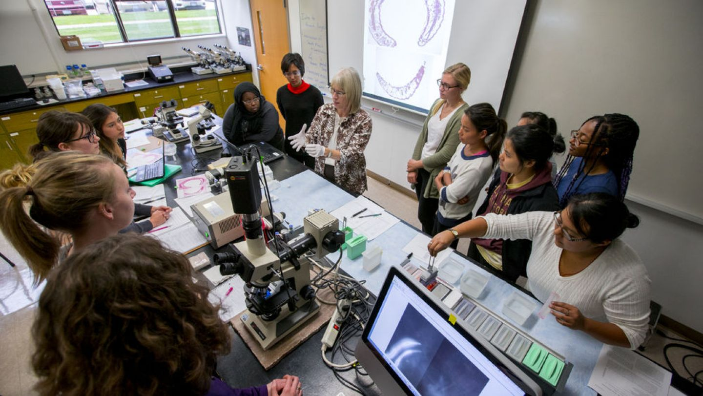 The grant will be used to implement the Katies for Aging Research and Equity (KARE) program, which will prepare diverse students for careers in aging research.